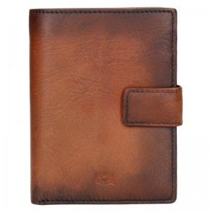 Pánská kožená peněženka Daag P20 - hnědá