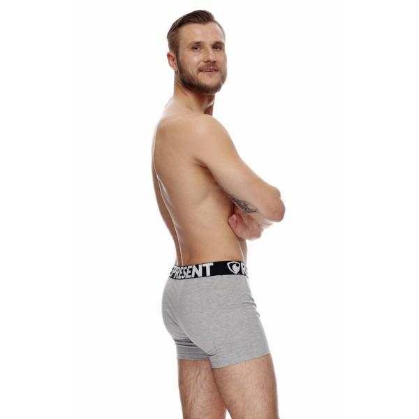 Pánské Boxerky Represent Sport Alpha