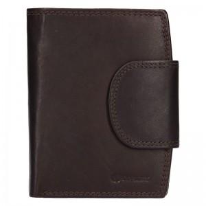 Pánská kožená peněženka Diviley Luiss - hnědá