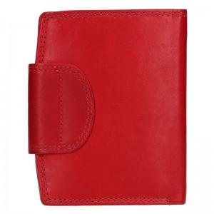 Pánská kožená peněženka Diviley Luiss - koňak