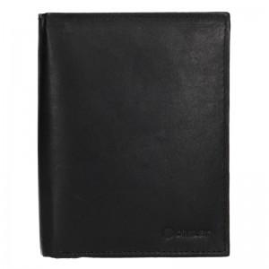 Pánská kožená peněženka Diviley Levin - černá