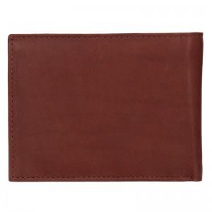 Pánská kožená peněženka Diviley Apolo - hnědá