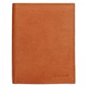 Pánská kožená peněženka Diviley Levin - tmavě hnědá