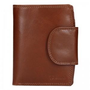 Pánská kožená peněženka Diviley Mars - hnědá