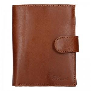 Pánská kožená peněženka Diviley Uran - hnědá