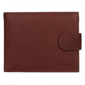 Pánská kožená peněženka Diviley Albert - hnědá