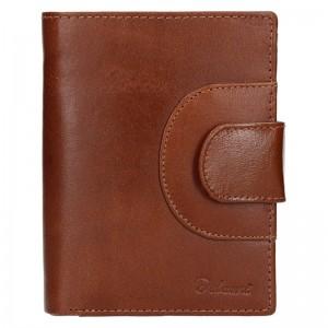 Pánská kožená peněženka Diviley Henry - hnědá
