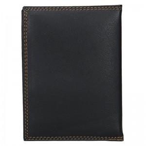 Pánská kožená dokladová peněženka SendiDesign Sincler - černá