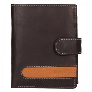 Pánská kožená peněženka Diviley Davide - hnědá