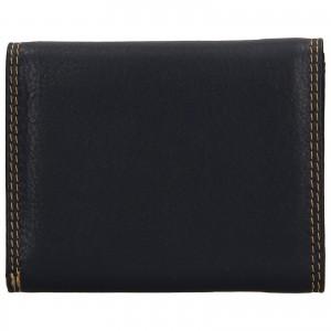 Dámská kožená peněženka DD Anekta Renna - modrá