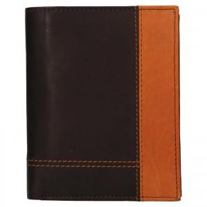 Pánská kožená peněženka Diviley Vilém - hnědá
