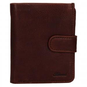 Pánská kožená peněženka Ashwood Harry - hnědá