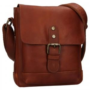Pánská kožená taška přes rameno Ashwood Tom - koňak