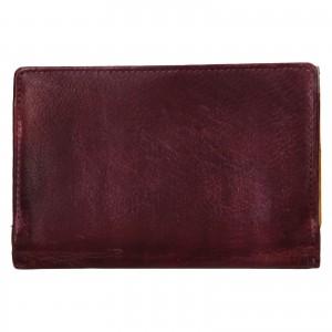 Dámská kožená peněženka Lagen Estafania