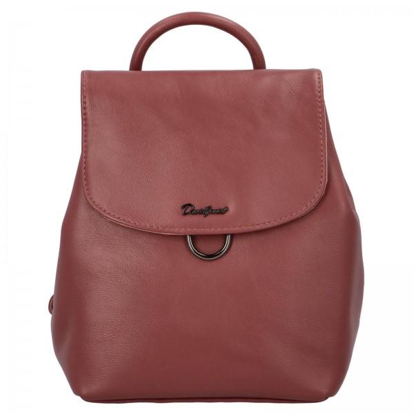 Módní dámský batoh David Jones Jennas - vínová