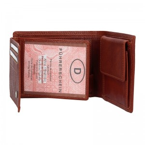 Pánská kožená peněženka DD Anekta Petr - koňak